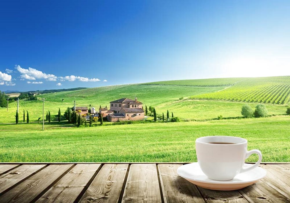 VACATION IN TUSCANY IN APARTMENT OR ROOM?